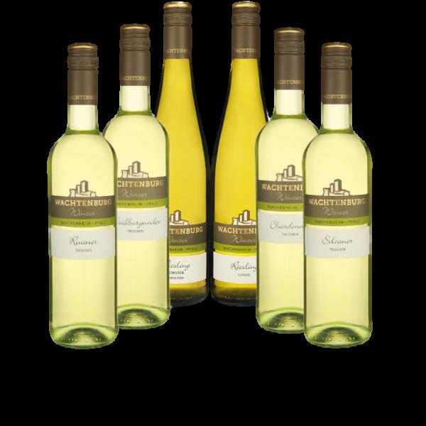 12er Spargelweinprobierpaket