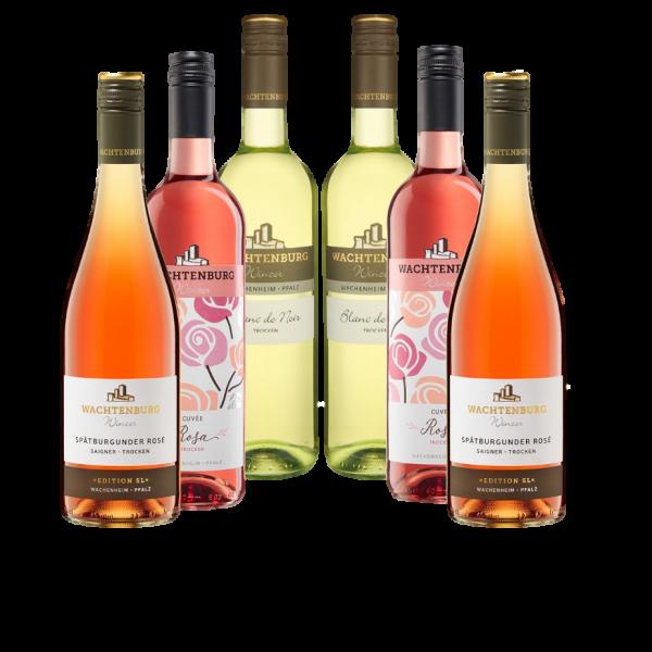 Sommer; Sonne; Rosé (12 x 0,75 l)